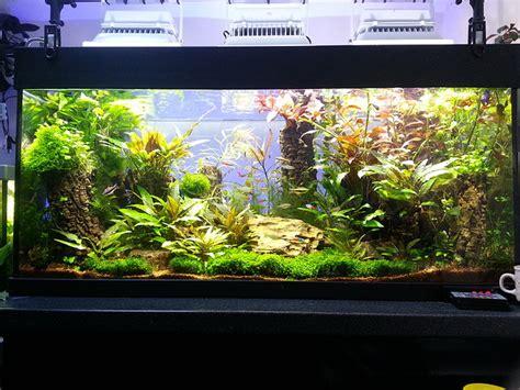 le hqi aquariumbeleuchtung mit led ersetzen ledkauf24 de led ambiente und beleuchtungsl 246 sungen f 252 r