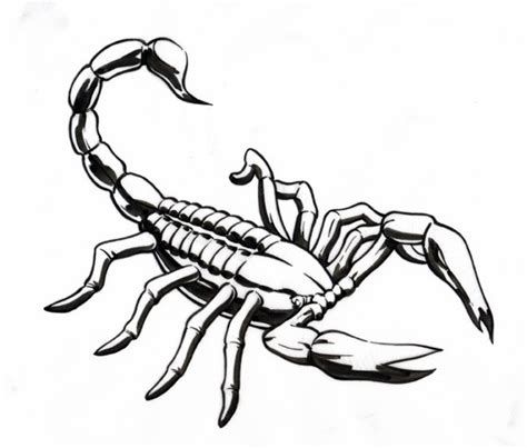 scorpion outline tattoo www pixshark com images
