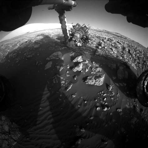 the cosmic zoo complex on many worlds books curiosity mars rover investigates eye catching
