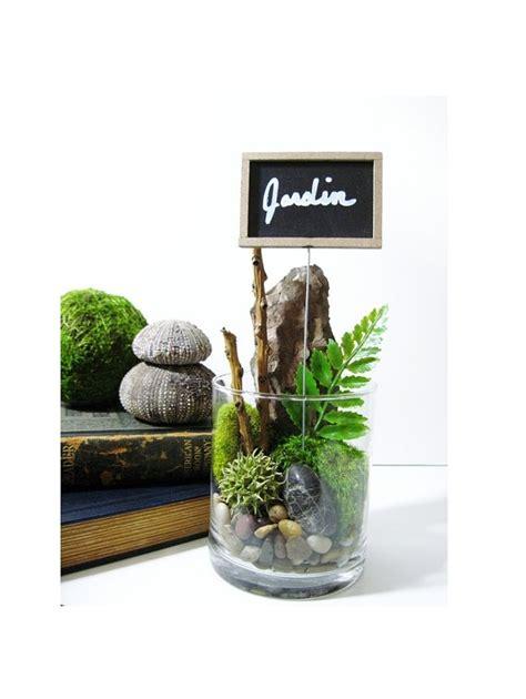 terrarium le le jardin forest treasures terrarium with chalkboard plant