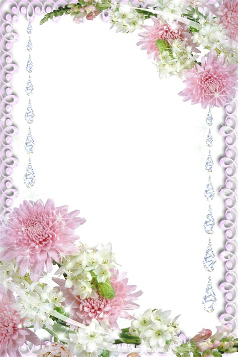 printable real flowers real flowers transparent png photo frame wallpapers and