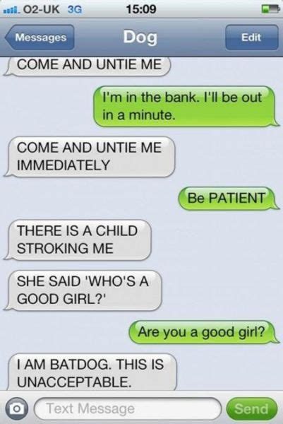 if dogs could text if dogs could text 11 pics high octane humor