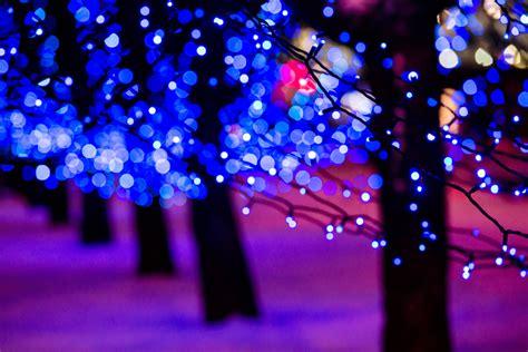 Magical Winter Solar Lights Under 163 10 Poundstretcher Winter Solar Lights
