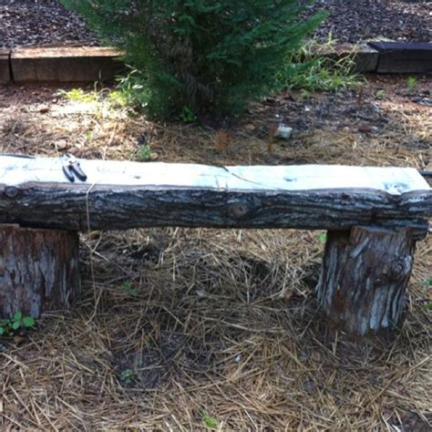 tree trunk bench plans garden bench made from a fallen tree trunk outdoor ideas