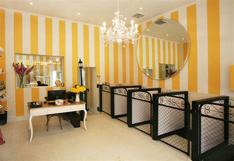 pet house dog salon dog grooming salons yahoo search results pets