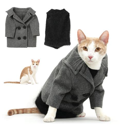 Sweater Jdt best thing you can actually buy united bamboo s cat