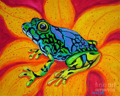 colorful frogs colorful frog drawings