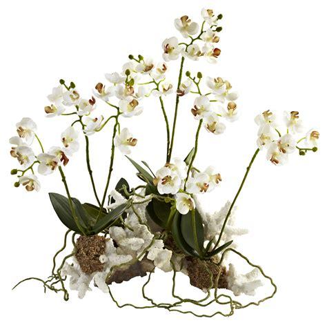 14 inch indoor silk mini phalaenopsis orchid arrangement