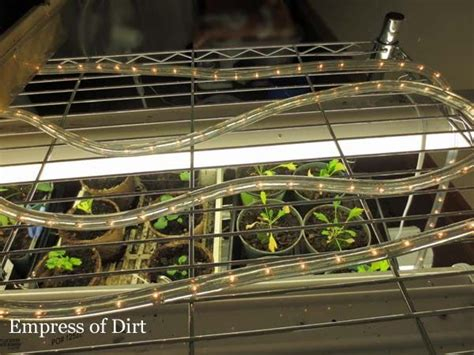 Rope Light Heat Mat by How To Grow Plants From Seeds Cuttings Led Rope Light