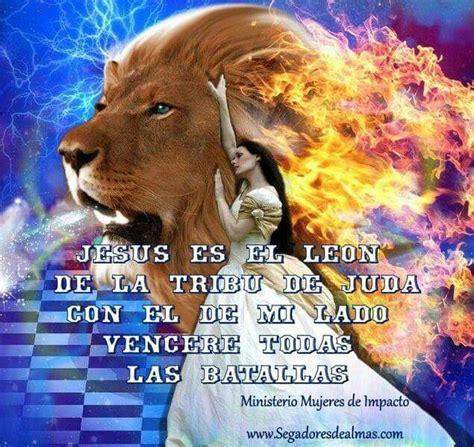 imagenes de leones con versiculos biblicos jesus es el leon de la tribu de juda frases cristianas