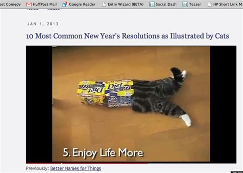 the year of the cat new year 10 most common new year s resolutions as demonstrated by