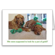 triad golden retriever rescue unique golden retriever st s day cards 50 fast shipping for st pat s