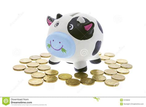 savings banks cow saving bank stock image image of porcelain thrifty