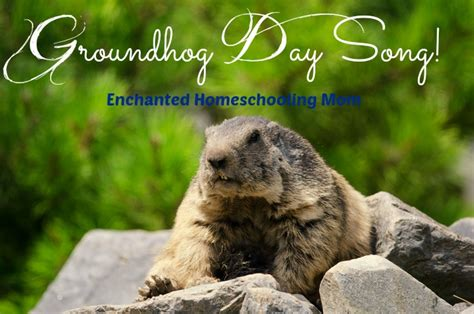 groundhog day song groundhog birthday quotes quotesgram