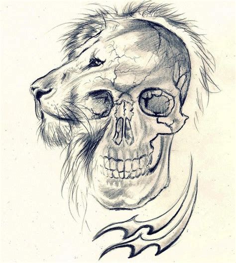 lion skull tattoo skull skull aquarius by cleicha