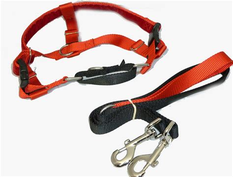 freedom no pull harness freedom velvet lined no pull designer harness and leash multi colors 3 sizes nwt ebay