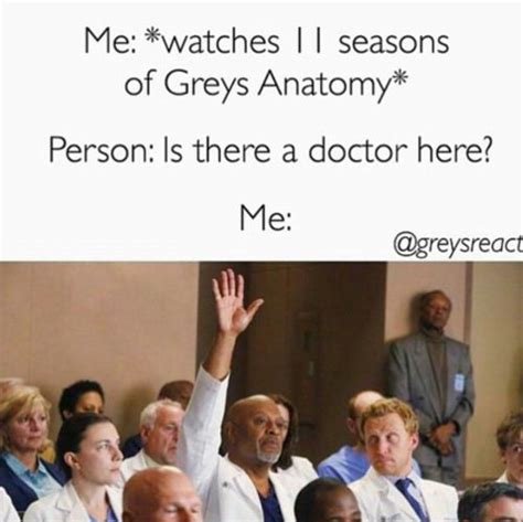 Greys Anatomy Memes - 25 funny greys anatomy memes quotes and humor