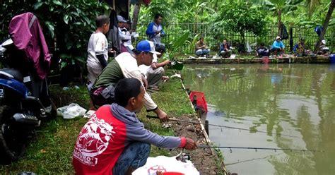 Pelet Wangi Kroto Ikan Keju Umpan Ikan Umpan Bawal Tombro umpanmancing membuat umpan mancing untuk umpan wangi atau amis