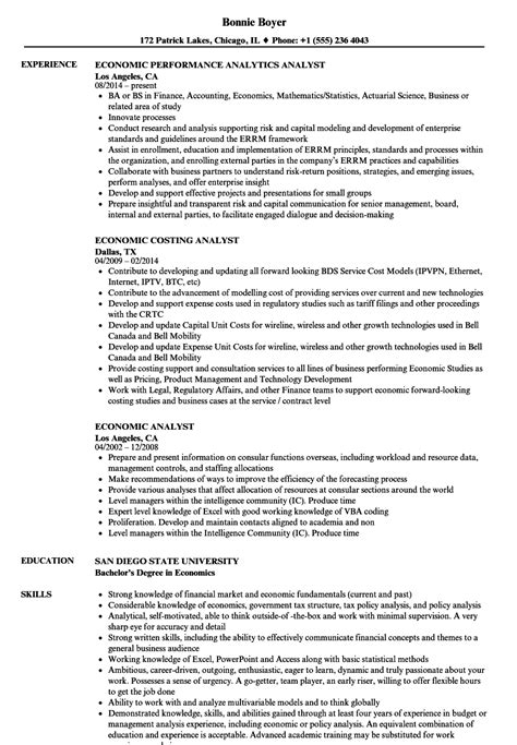 Bsa Analyst Sle Resume by Bsa Analyst Sle Resume Informational Essay Sle