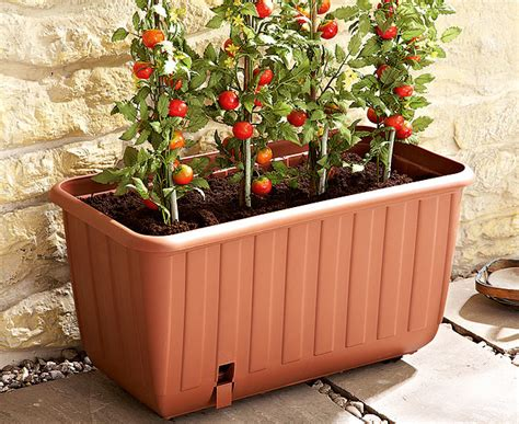 portable self watering tomato planter scotts of stow