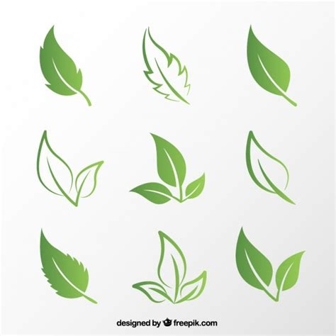 leaf pattern vector art leaves vectors photos and psd files free download