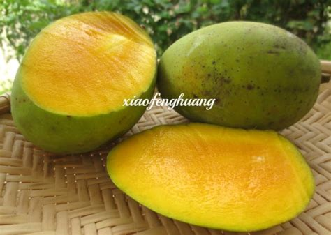 Mango Kuini buah mawang malaysia vegetarian food