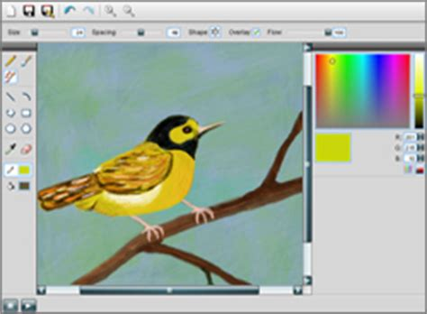 draw oline slimber drawing and painting lessonpaths