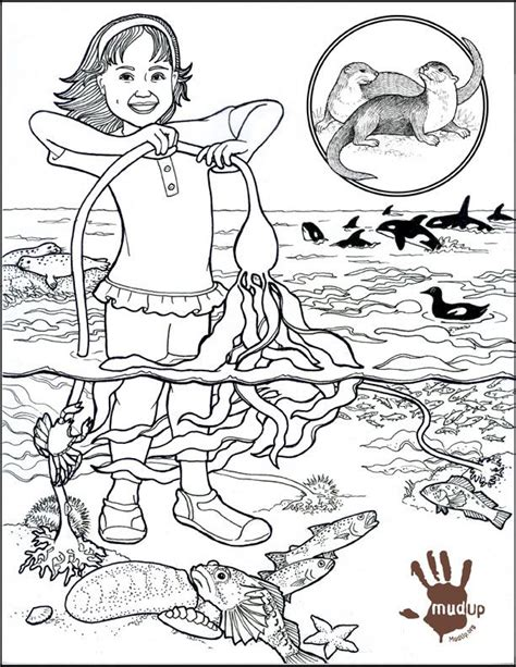 Eco System Colouring Pages Ecosystem Coloring Pages