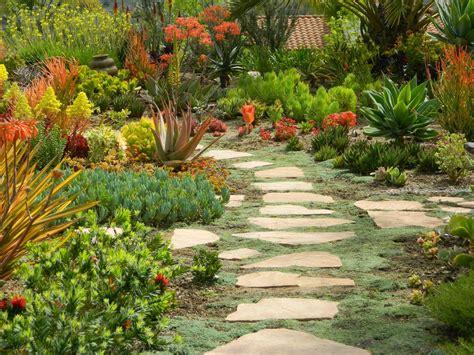 Gardenenvy Succulent Hilltop Creates Quite The Scene In San Diego Flower Garden