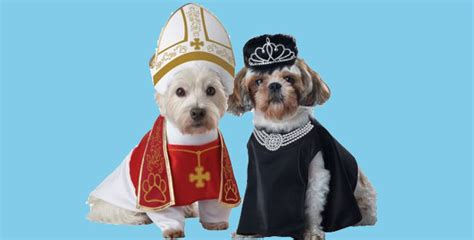and owner costumes pet and owner costume ideas for 2015