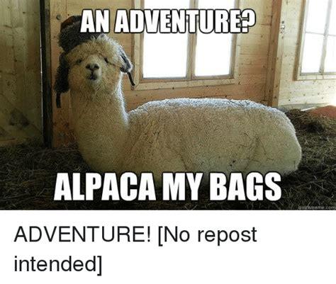 Alpaca My Bags Meme - 25 best memes about alpaca my bags alpaca my bags memes