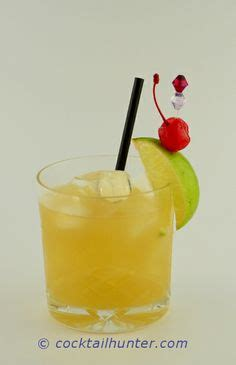 1000 images about alcohol party drinks punches shots dessert shots drinks infused