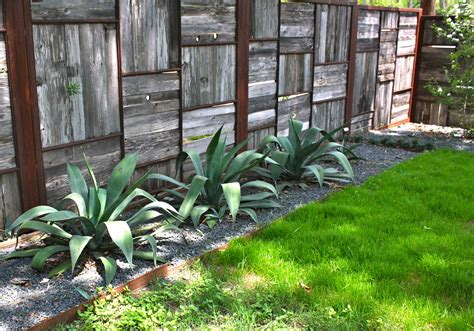 creating privacy in small backyard take a tour inside austin gardens renee s new blog