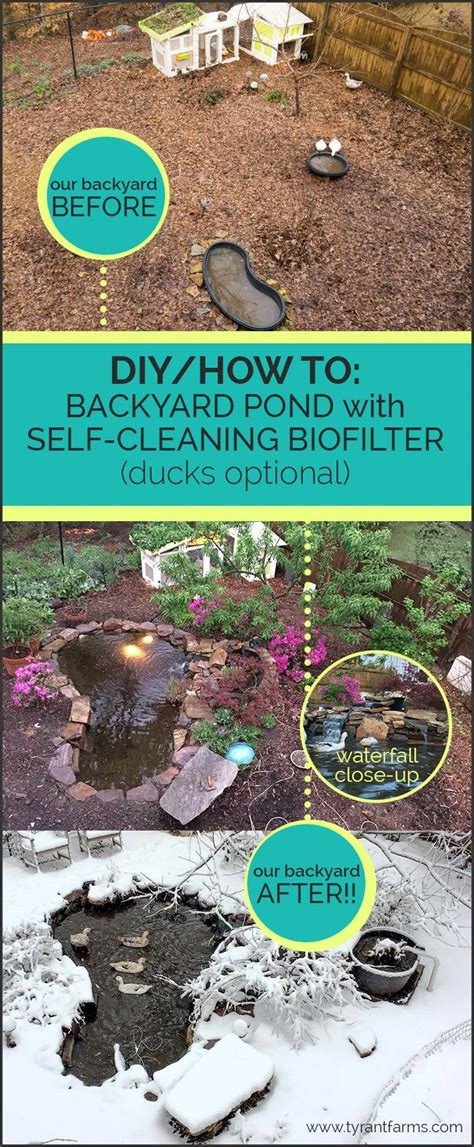 how to clean a backyard pond diy how to build a backyard pond with a self cleaning