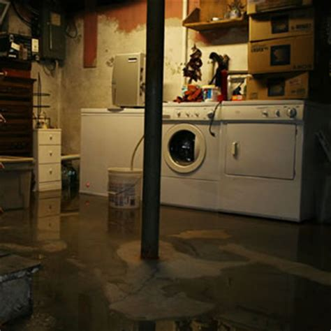 why do basements flood the importance of professional basement flooding repair