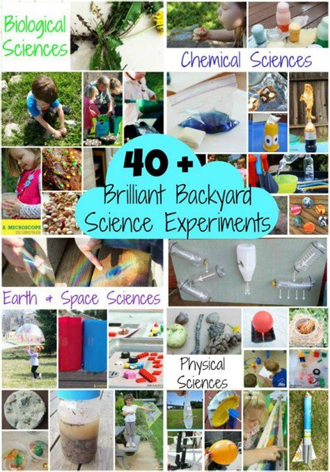 backyard science projects 17 best images about science fair project ideas on