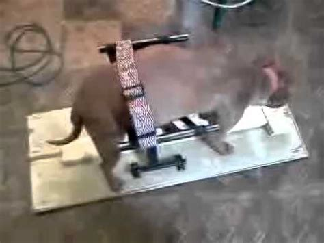 dog breeding bench homemade dog breeding stand part 2 youtube