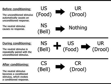 classical conditioning diagram quotes on classical conditioning pavlov quotesgram