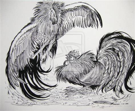 fighting rooster tattoo designs roosters fighting large by houseofchabrier on deviantart