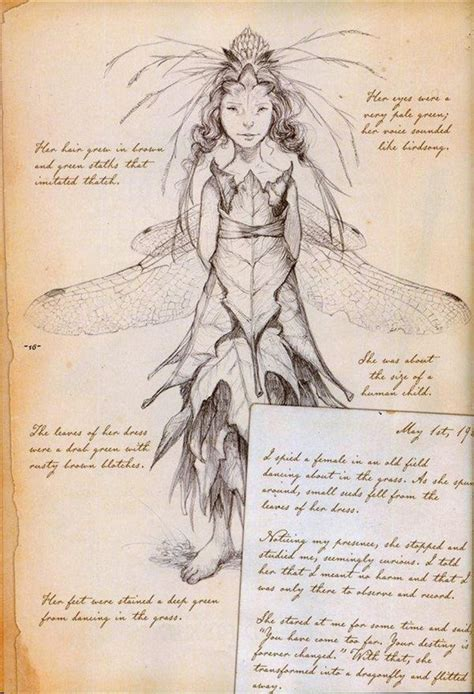 arthur spiderwicks field guide 1000 images about art fantasie on sprites fields and brian froud