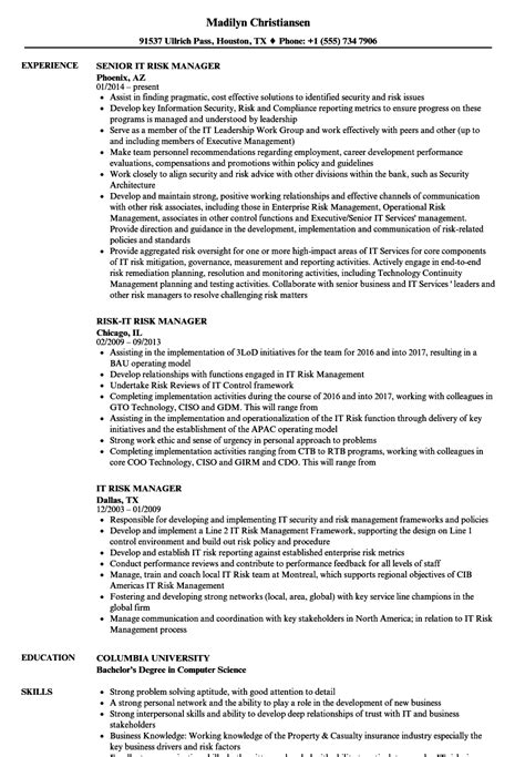 it risk manager resume sles velvet