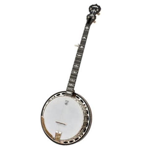 best banjos the best 5 string banjos for professionals and beginners