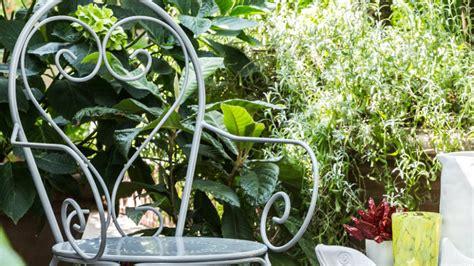 sedia in ferro battuto dalani sedia in ferro battuto la perfetta seduta da