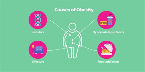 10 Causes Of Obesity by Causes Of Obesity Driverlayer Search Engine