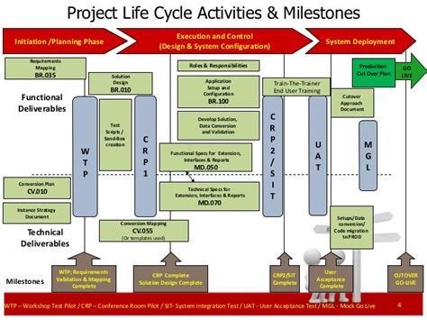 erp project management primer