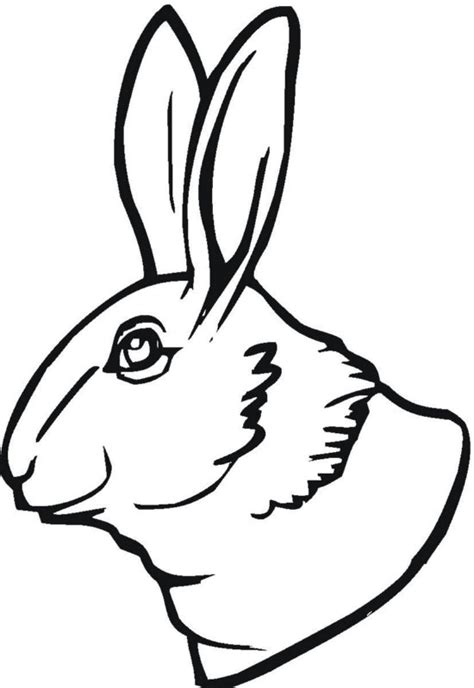 Rabbit Head Coloring Page | printable coloring pages of baby bunnies bunny head