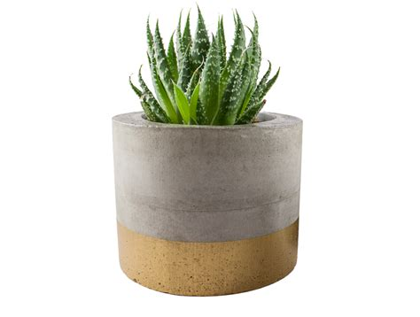 Gold Planters by Paint Dipped Concrete Planter Pot Gold Felt
