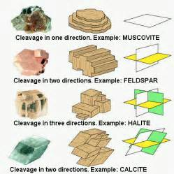 which of the following best describes bedded gypsum and halite minerals 6th grade science