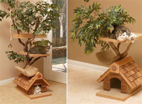Best Cat House best cat house trusper