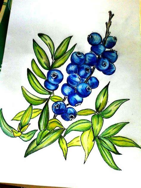 askfm raraspberry 17 best images about coloring on pinterest paint